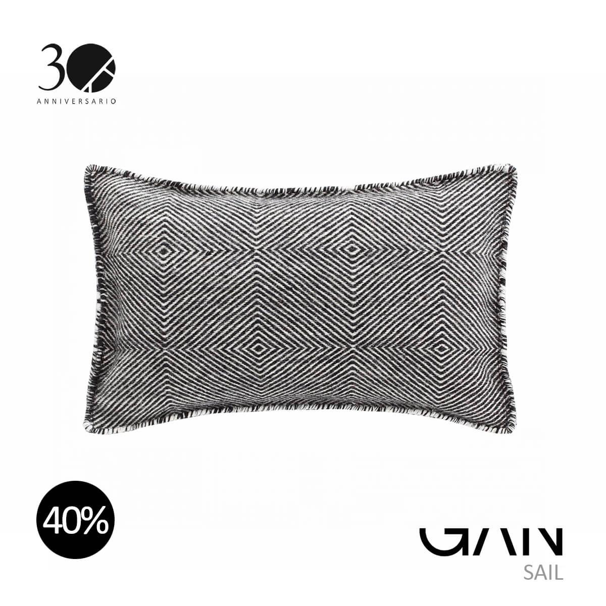 GAN-SAIL